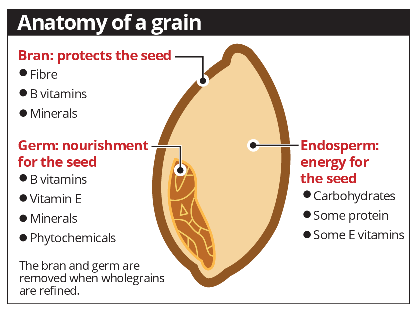 Guide To Whole Grains In Ones Diet Health News Asiaone