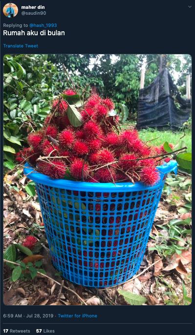 Rambutan cameos in Netflix sci-fi series - as alien fruit