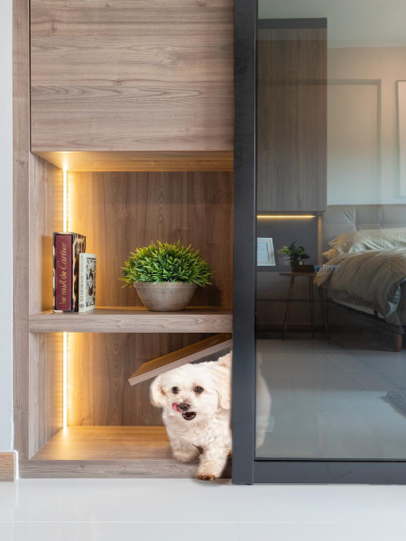 How to build a pet-friendly haven, just like these 7 homes