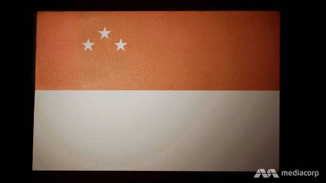National Day 2020: Singapore's Flag Used to Look Really Different - and Other Random Facts About the Flag