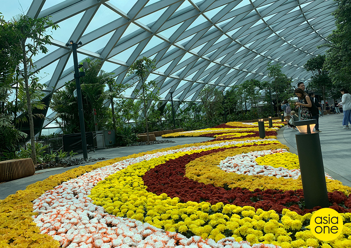 Singapore's Changi Airport opens new complex to lure travelers