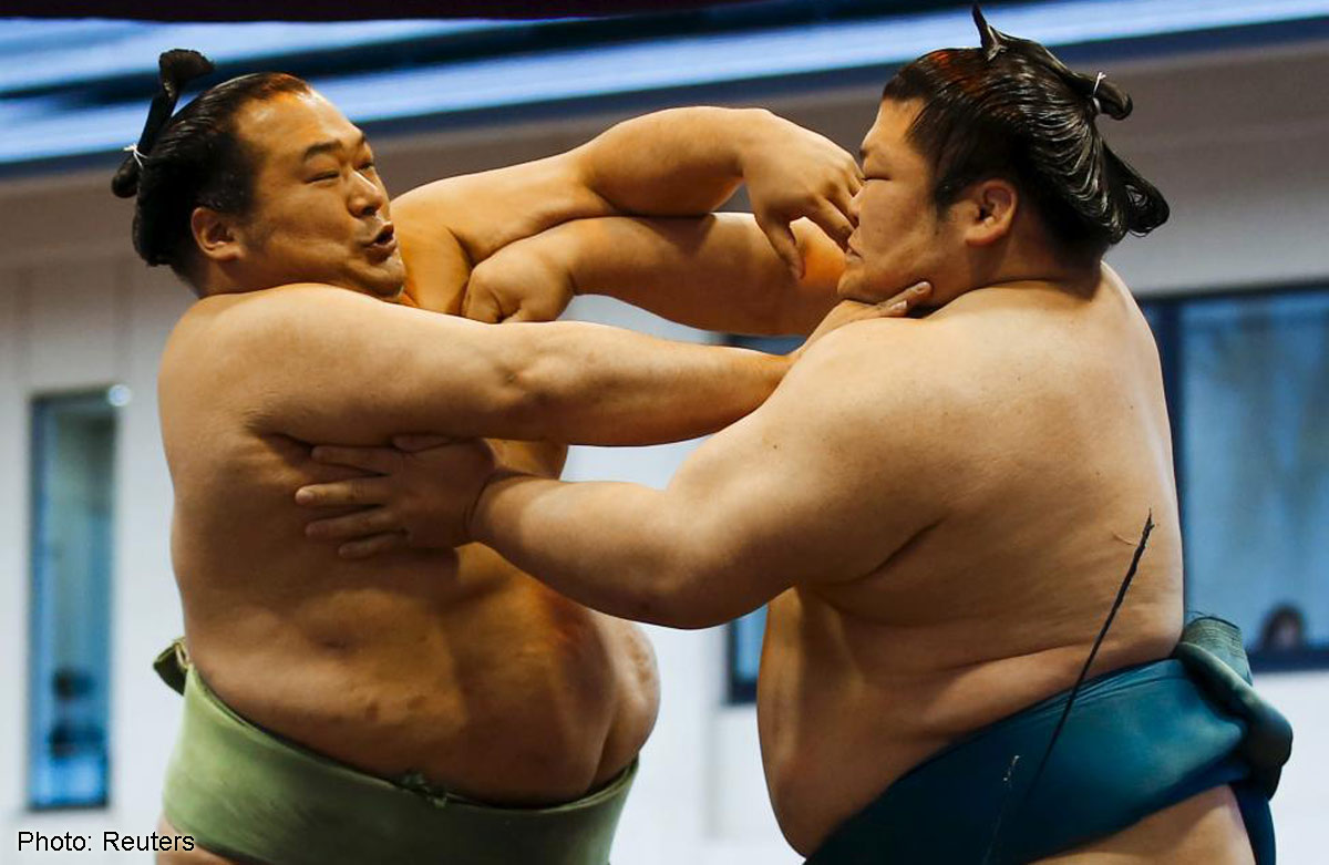 sumo wrestling Sumo basically took its present form in the edo period matches were held to raise money to construct shrines and temples or to replace bridges, and the professional.