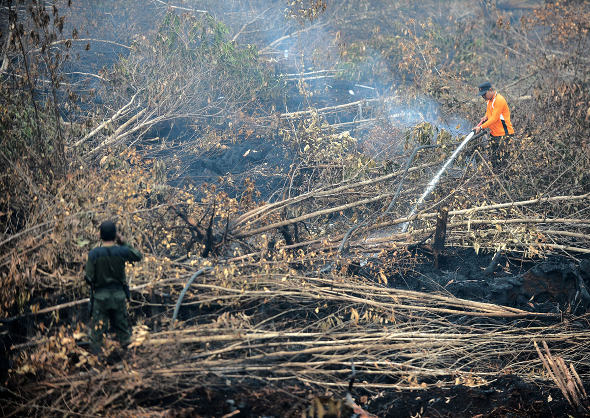 haze pollution and sophisticated forest clearing Haze pollution, the term used in southeast asia for smog from the combustion of biomass, is a large recurrent phenomenon in the region during the dry season due to widespread burning for land clearing purposes.