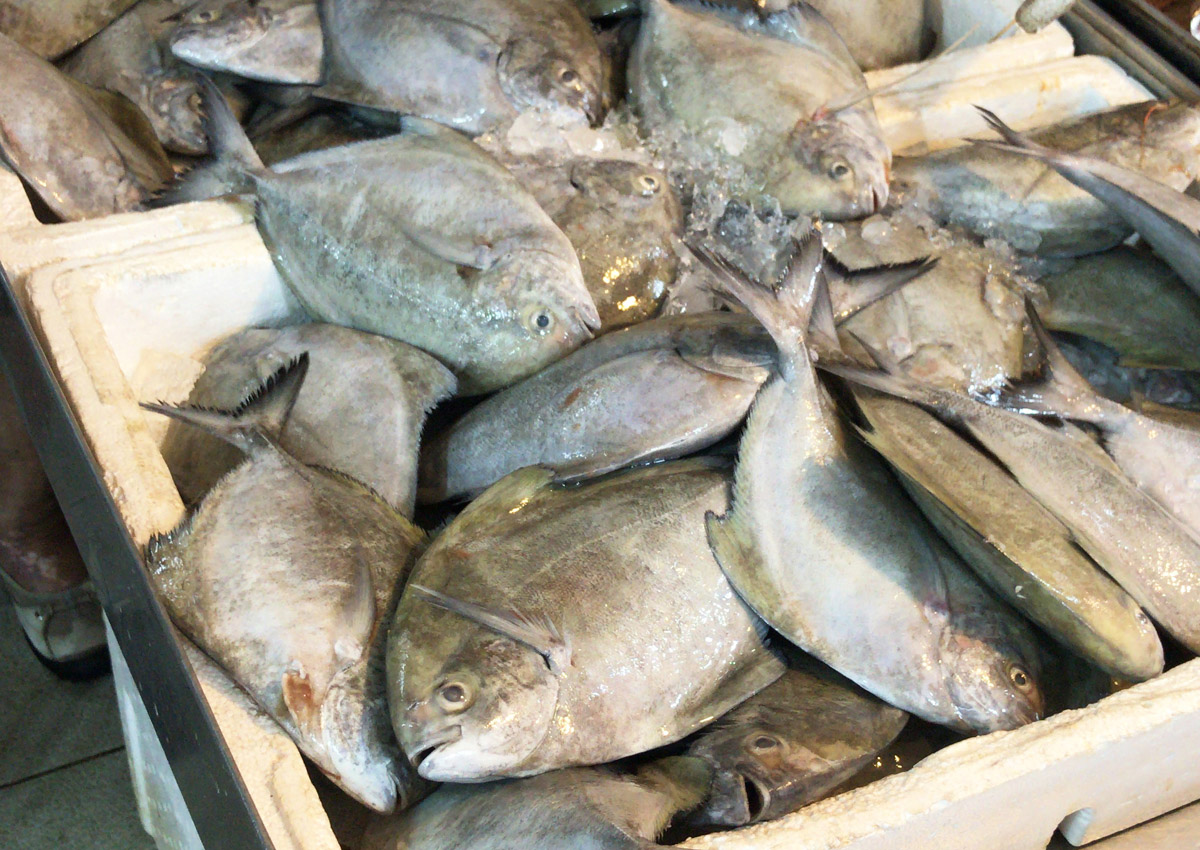 Businesses in Singapore to be hit by Malaysia's fish ban
