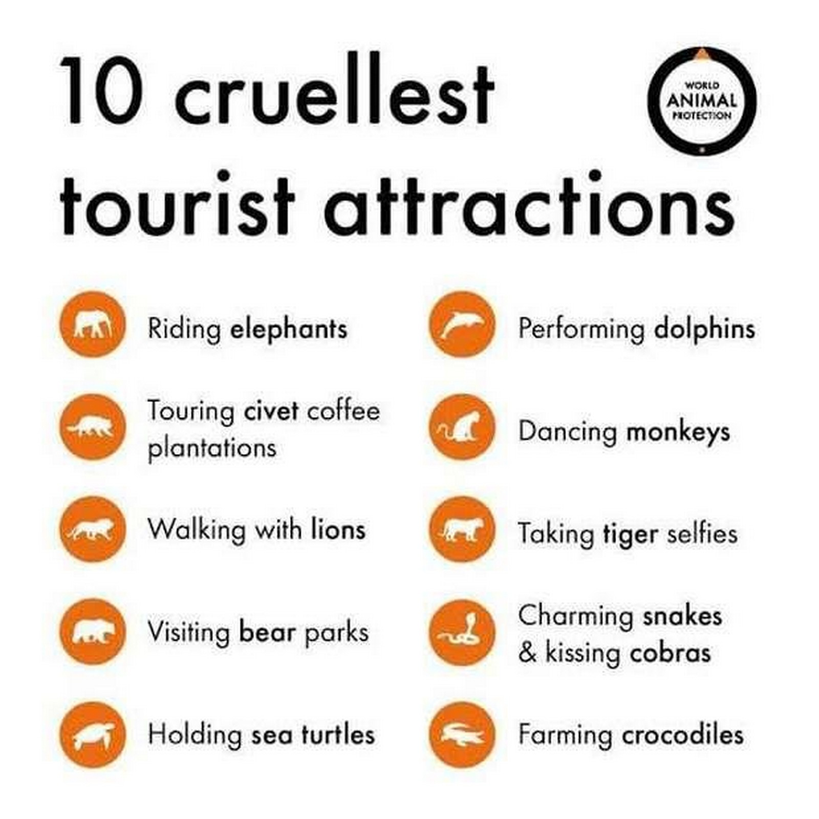 Malaysian Feed Asiaone Re Idiot Wah Animals At Tourist Attractions May Be Suffering