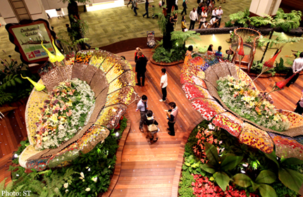 Senses Come Alive At Airport S Enchanted Garden Singapore News Asiaone
