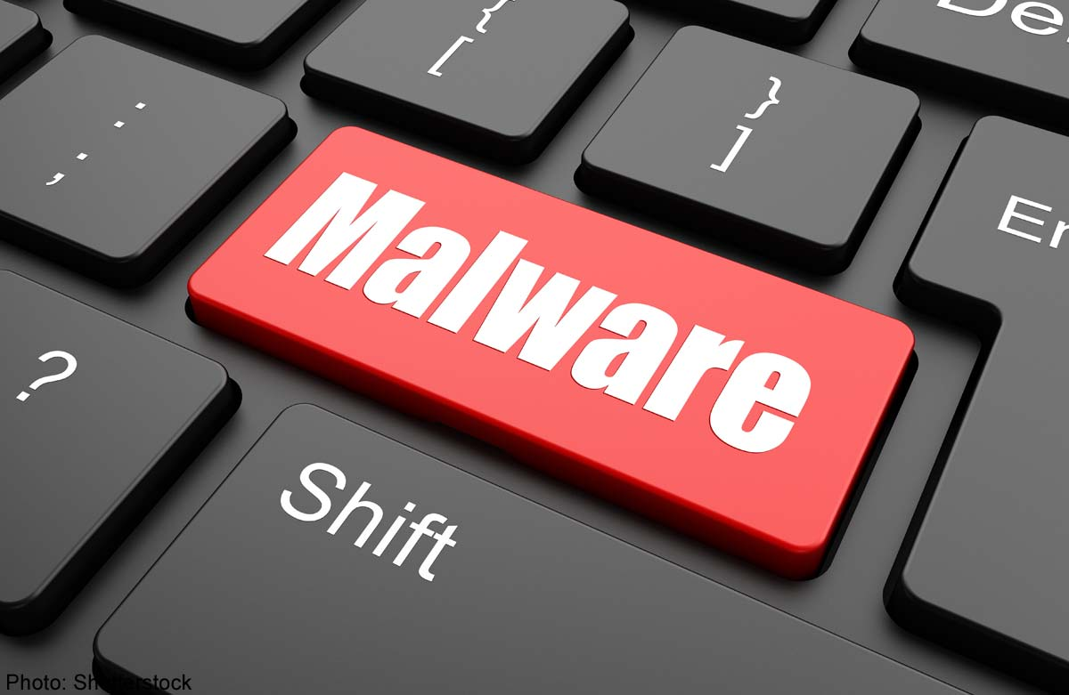 Malware spreading by hiding in WordPress themes and plugins