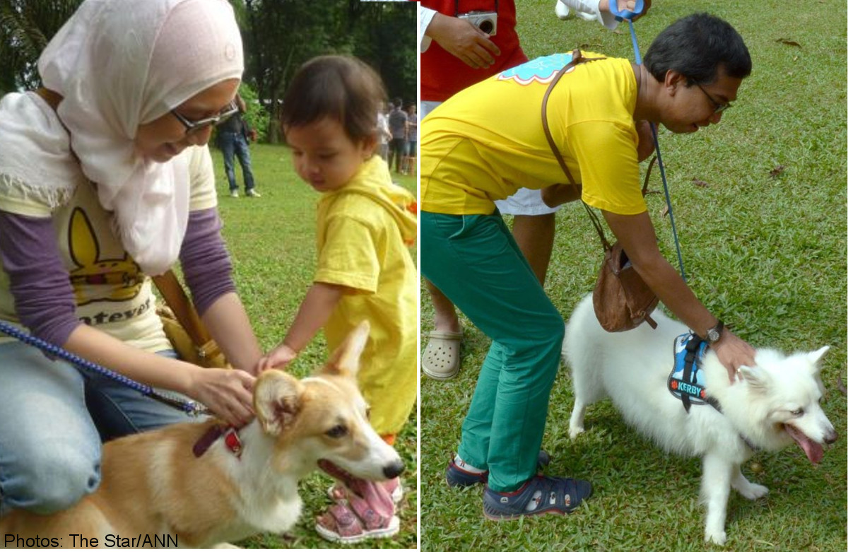 Malaysia S I Want To Touch A Dog Event A Big Hit With Muslims Malaysia News Asiaone