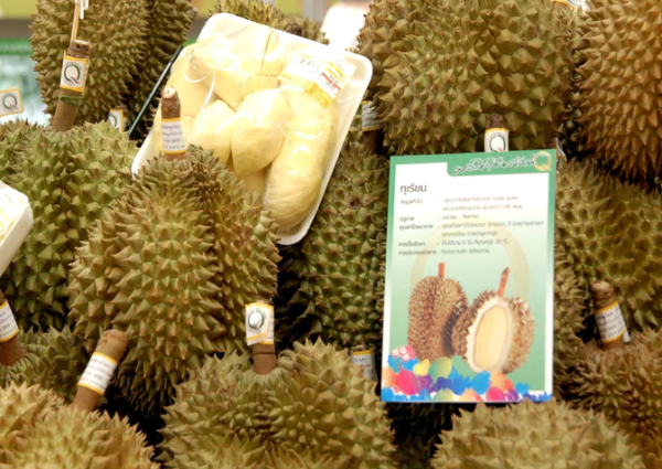 Thailand warns its durian farmers of future competition from