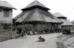 Mount Sinabung erupts - 14