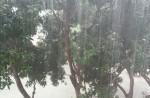 Flash flood along Chai Chee Road - 23