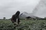Mount Sinabung erupts - 18