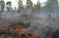Hotspots in neighbouring Sumatra increase from 29 to 222