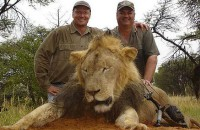 Zimbabwe calls for US hunter to be extradited over lion death