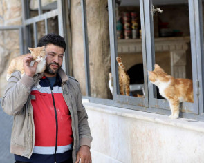 In war-torn Syria, 'cat man' starts rare animal clinic