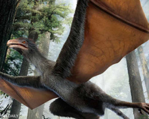 Chinese scientists discover 'batman dinosaur'