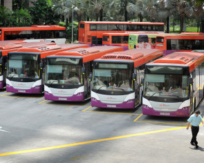 Beefed-up bus fleet 'needs more Singaporeans'