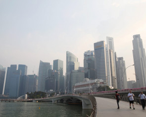 Singapore taking action against firms behind fires