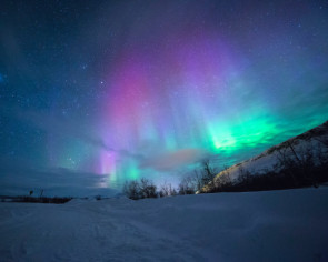 Virtual vacations: Travel through your screen with northern lights livestreams, otter cams, and Osaka street tours