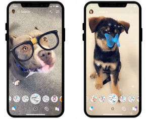 Snapchat introduces lenses for dogs