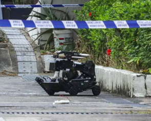 Hong Kong bomb disposal squad destroys suspicious object in village flower bed
