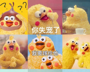 Chicken-shaped parrots become internet celebrity in China