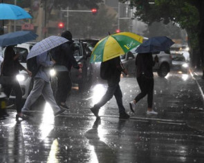 Australia celebrates as heavy rains dampen huge bush fires