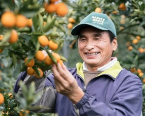 Lunar New Year kumquats: Lucky fruit has health benefits too