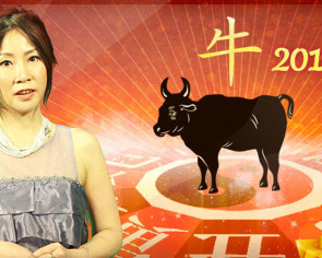 2017's a great year to start a business if your zodiac sign is an Ox