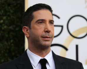 David Schwimmer has suggested an 'all-black or all-Asian' reboot of Friends should be made.