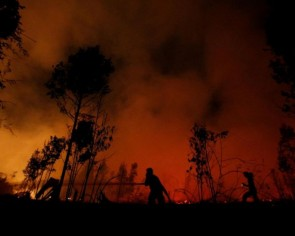 Indonesian province declares state of emergency over forest fires