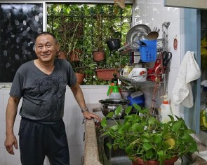 Owner of Tampines 'jungle' flat says it doesn't pose dengue threat
