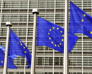 EU to ease visa procedure  for Indonesians