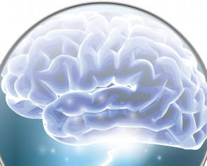New brain cells in the old? US study stokes debate