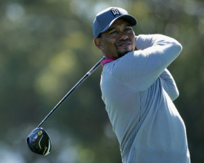 Golf: Tiger Woods says he's getting 'professional help'