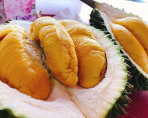 $4.50 durian buffet and other durian buffet promotions to catch this season