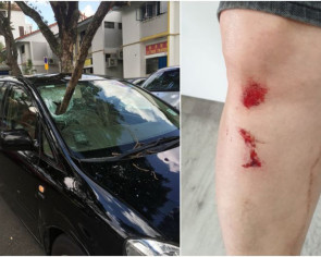 Falling tree branch pierces through car windscreen and injures man in Geylang