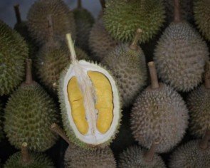 Cheapest durian delivery vendors in Singapore to satisfy your Mao Shan Wang cravings