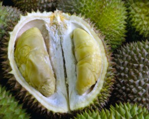 The ultimate guide to common durian types in Singapore