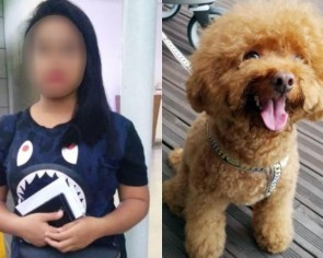 Maid who allegedly threw dog off third-floor balcony charged in court