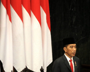 Jokowi to be tested for Covid-19 amid heightened concerns