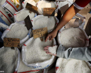Indonesia gripped by plastic rice scare