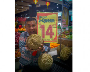 Pungent 'J-Queen' durians sell for $1,350 in Indonesia