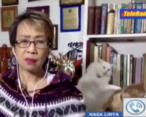 Literal catfight goes viral as furs fly during serious Filipino news broadcast