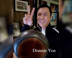 Donnie Yen takes on viral fight video challenge and kicks butt