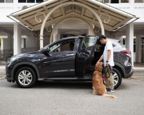 Big dogs allowed! Grab expands suite of premium transport offerings with GrabPet XL and GrabCar Exec