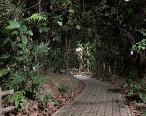 I went on a ghost-hunt at Bukit Batok Nature Park and here's what you will need to do to prepare yourself