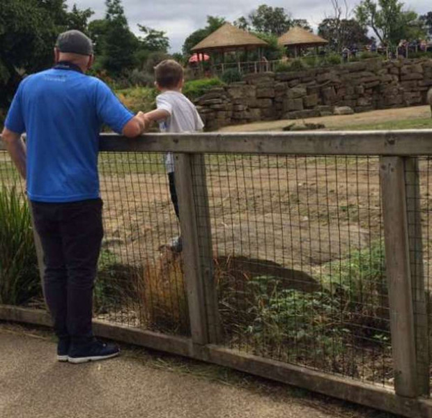 Boy seen standing inside rhino enclosure in Dublin Zoo
