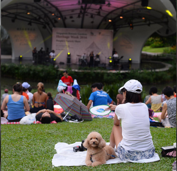 Weekend planner Aug 17 - 18: Free music festival along the Singapore River, pets night out & other fun activities