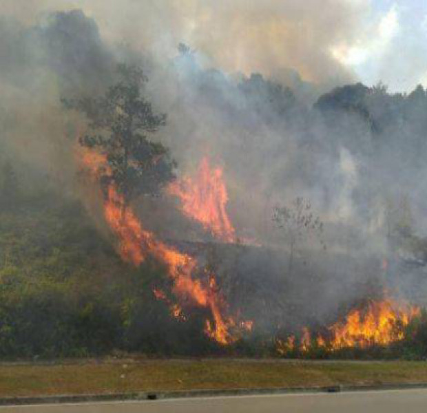 Firefighters battling forest fire northwest of Singapore